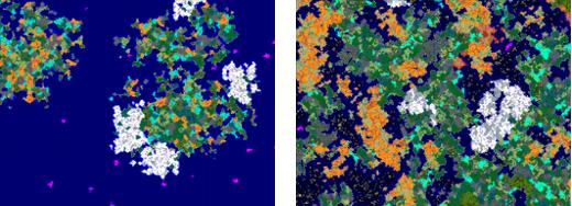 Generatory map 1.6 i 1.7